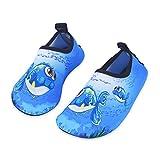 Kinder Strandschuhe Jungen Mädchen Schwimmschuhe Aqua Schuhe Baby Badeschuhe für Beach Pool Surfen Yoga Unisex(Blau Große Augen Fisch,20/21EU)