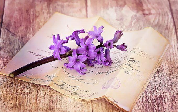 Das Wenn Buch - Brief mit lila Blume