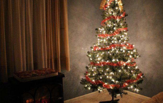 Kein Geld für Weihnachtsgeschenke - Weihnachtsbaum