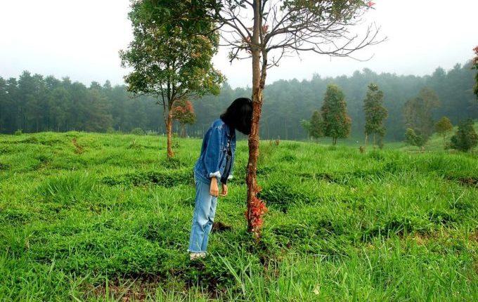 Mix aus Windeln, Abhalten, Töpfchen und windelfrei - Frau lehnt am Baum