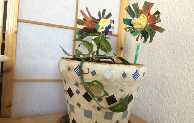 Frühlingsblumen - Frühlingsblumen im Blumentopf
