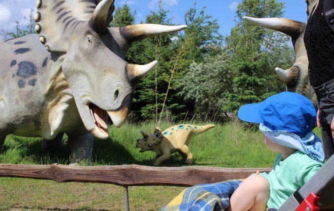 Dinopark Germendorf - Kind beobachtet großen und kleinen Dinosaurier