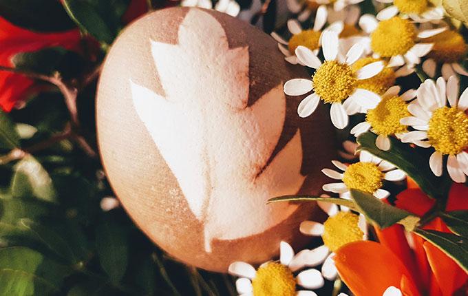 Gefärbtes Ei mit Blatt Muster