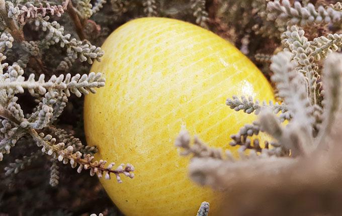 Gelbes Ei mit Netz Muster