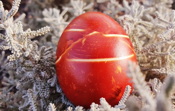 Rot-Braunes Ei mit Streifen