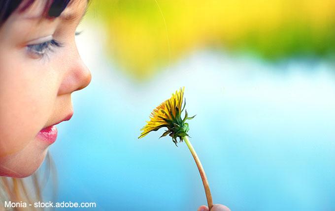 Kind bewundert Löwenzahnblume