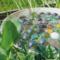 Bienentränke selber bauen – Die 3 coolsten Ideen