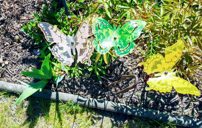 Schmetterlinge mit verstecktem Hinweis für Schnipseljagd