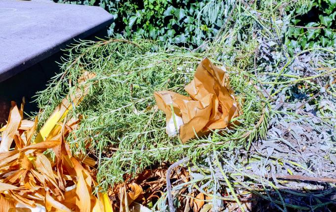 Schnipsel mit nächstem Hinweis für Schniteljagd auf dem Kompost